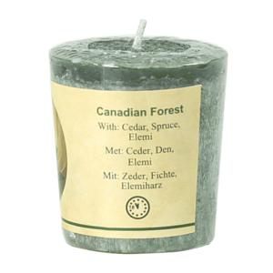 Geurkaarsje Canadian Forest